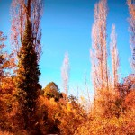 Paisaje_otoño